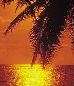 jamaica-379899-1388983183.jpg