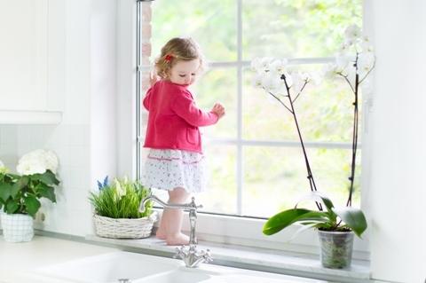 Cây xanh sẽ tạo một dạng rèm che tự nhiên cho ngôi nhà của bạn.