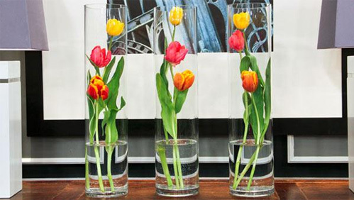 du-kieu-cam-hoa-tulip-de-nhung-dep-sang-trong-3