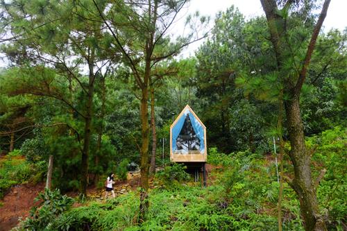 Những ngôi nhà Việt hơn 10 m2 lên báo nước ngoài - 2