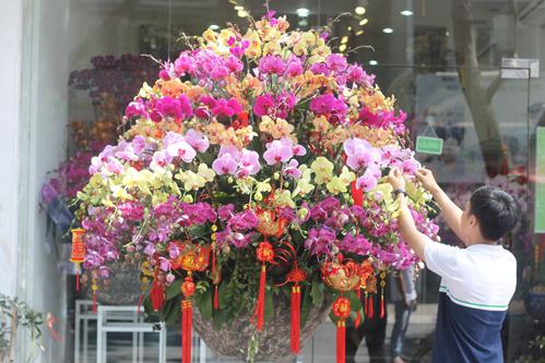 Bình hoa lan hồ điệp 8 tầng với nhiều màu sắc có giá 80-90 triệu đồng.