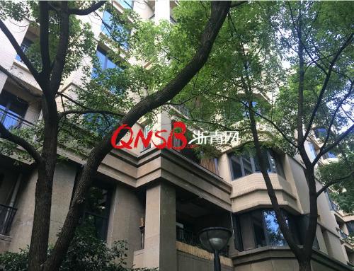 Vợ chồng bà Zhang đã tạm về ở nhà bố mẹ đẻ trong căn hộ 90m2, để nhường chung cư cao cấp cho con trai, trong thời gian chờ mua nhà mới.