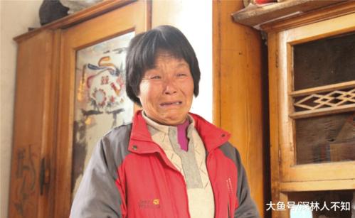 Zihao từ đó giúp ông bà chơi với hai em và phụ ông bà chăm nuôi. Gia đình em bị đòi nợ suốt trong thời gian qua.