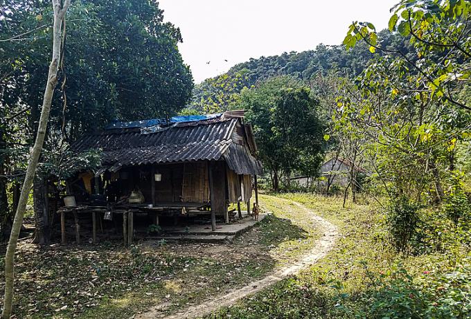 Căn nhà của mẹ con Hồ Thị Chưng nằm trên đồi. Ảnh: Nguyễn Đắc Thành.