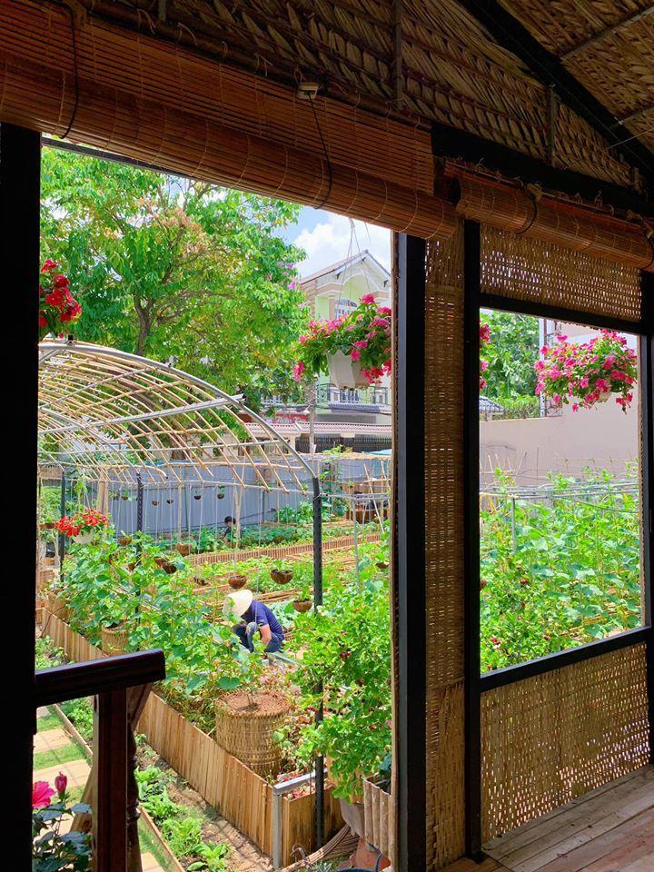 Mảnh đất đầy rác biến thành vườn rau xanh mướt - Ảnh 10