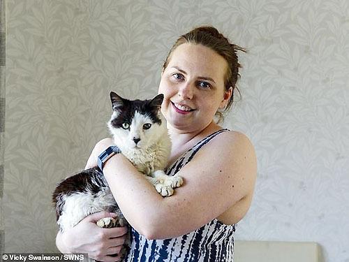 Tái ngộ mèo cưng sau 12 năm