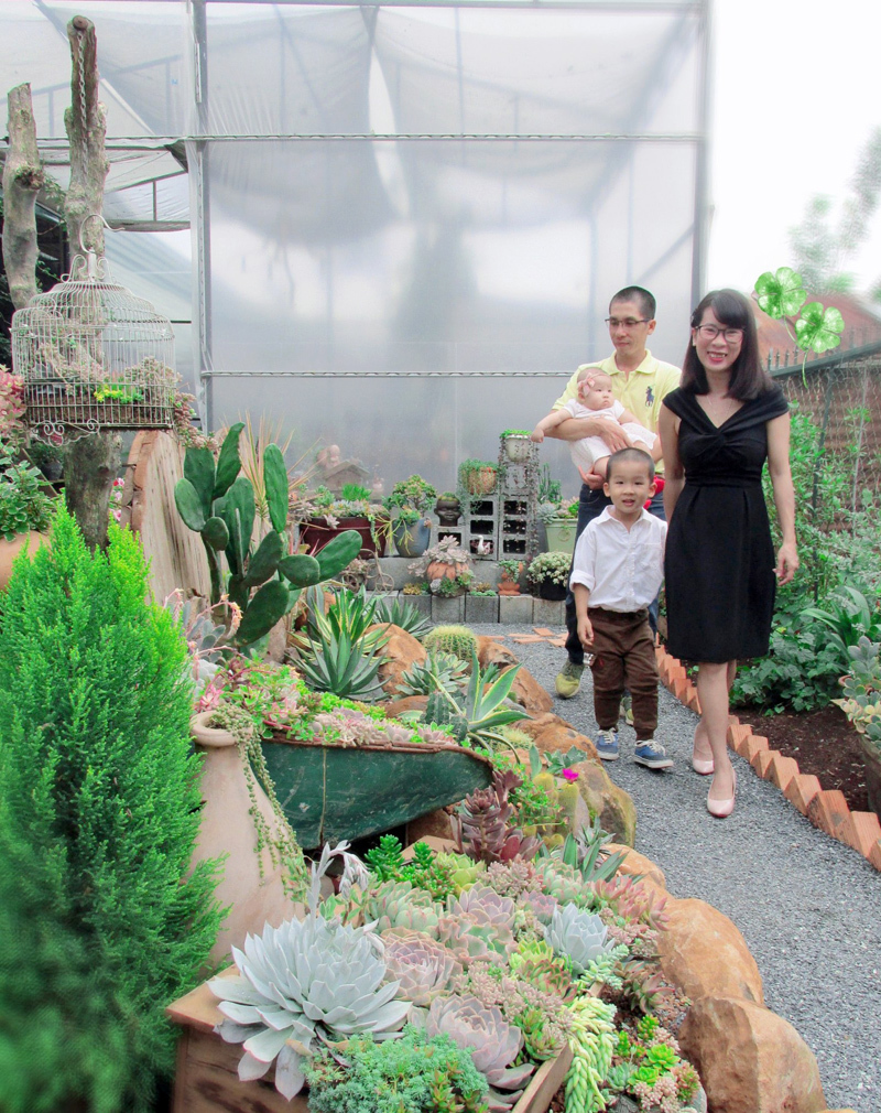 Vườn đẹp như tranh của cặp vợ chồng bỏ phố về quê
