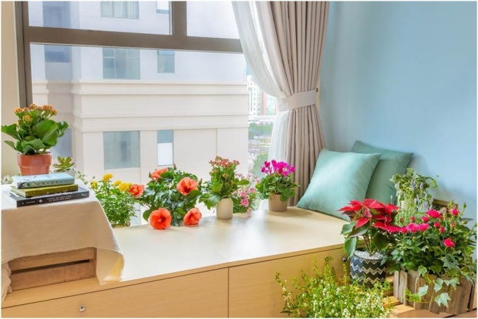Việc phối hợp nội thất tông mộc với những chậu hoa có màu sắc tươi sáng sẽ giúp không gian sống sinh động mà không loè loẹt.