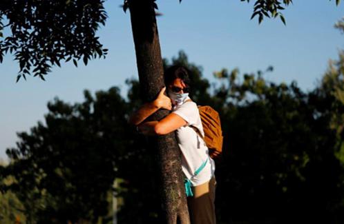 Một phụ nữ ôm cây ở Jerusalem. Ảnh: Reuters/Ronen Zvulun.