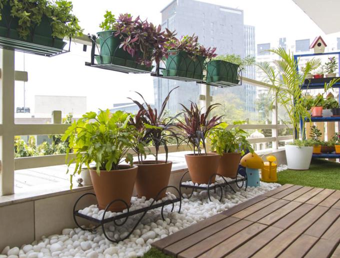 Trồng cây ban công là gợi ý đơn giản để đến gần hơn với thiên nhiên khi sống trong những khu đô thị hiện đại.