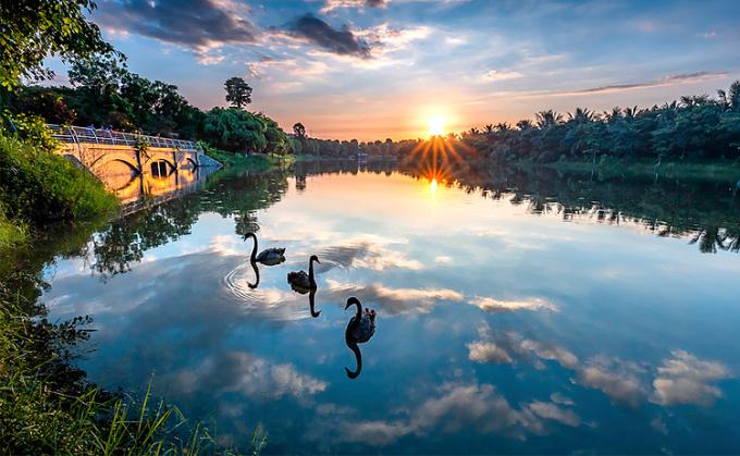 Hồ Thiên Nga rộng hơn 50ha tại Ecopark.