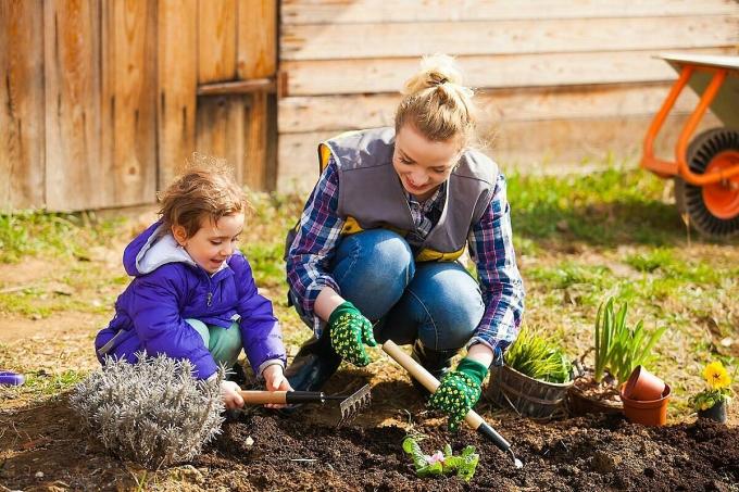 Làm vườn là hoạt động tuyệt vời để dạy cho trẻ em về nguồn gốc của lương thực, thực phẩm. Ảnh: Shutterstock.