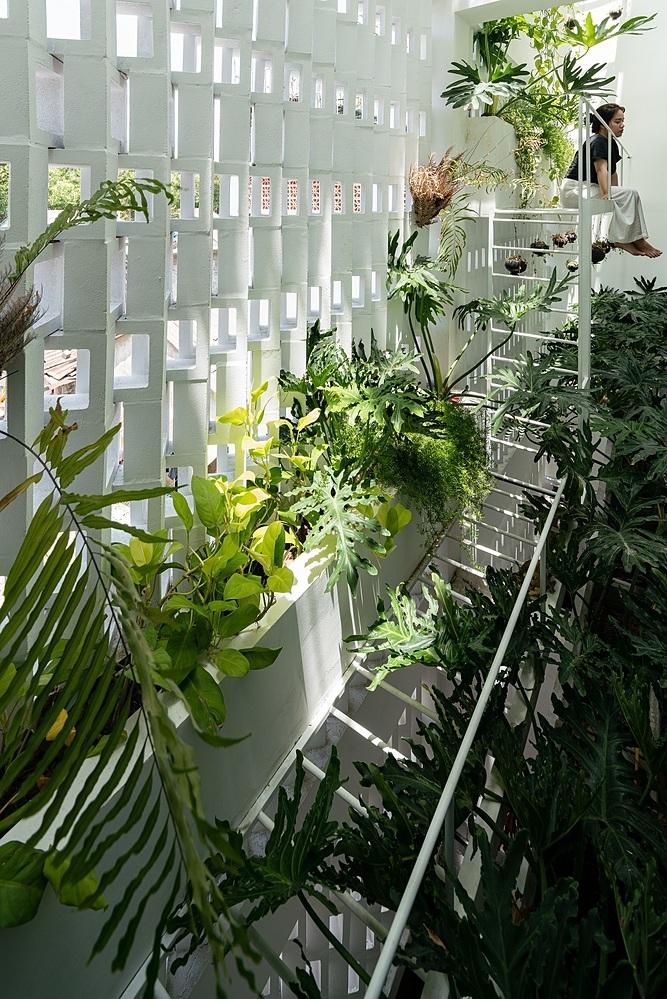 Cuối nhà, chủ nhà bố trí một lớp tường thông gió, kết hợp với giếng trời và vườn cây. Ảnh: Quang Dam.