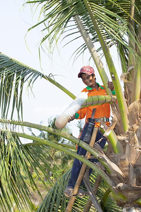 Mát xa hoa dừa thu gần nửa tỷ mỗi tháng