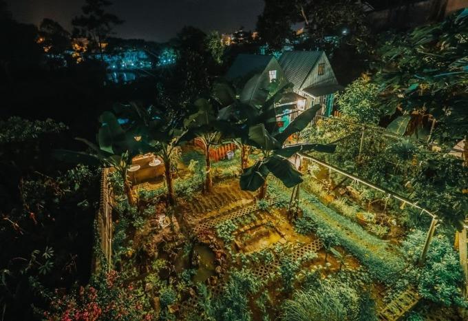 Một góc vườn từ trên cao tại căn nhà gỗ của vợ chồng thương. Ảnh: Nguyễn Duy Phong.