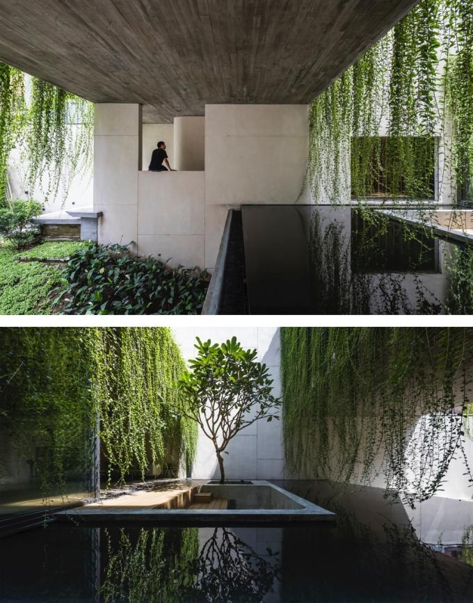 Có nhiều cây xanh, hồ nước lớn và đầy ánh sáng, căn nhà như nằm giữa một công viên. Ảnh: Oki Hiroyuki.