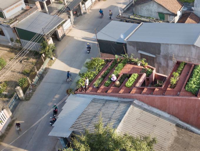 Vợ chồng chủ nhà chưa bao giờ nghĩ có thể trồng trọt trên mái nhà cho đến khi công trình được hoàn thành. Khu vườn trên mái giờ đây gắn liền với cuộc sống thường nhật của họ. Ảnh: TAA Design.