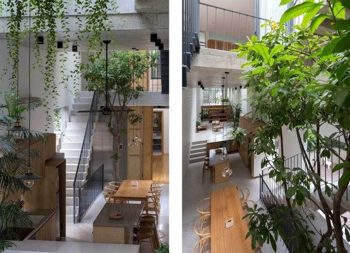Các không gian sinh hoạt chung được sắp xếp và bố trí với những độ cao sàn khác nhau và kết nối bằng bậc thang. Phòng ngủ được đặt trên không gian sinh hoạt chính và phía trong cùng của ngôi nhà. Ảnh: Hoàng Lê.