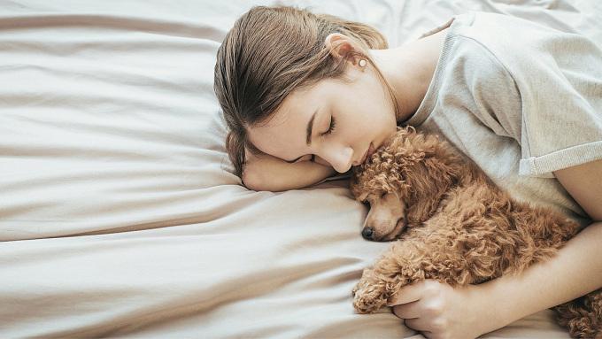 Những con chó giúp phụ nữ ngủ ngon hơn bạn đời hay mèo. Ảnh: Metro.