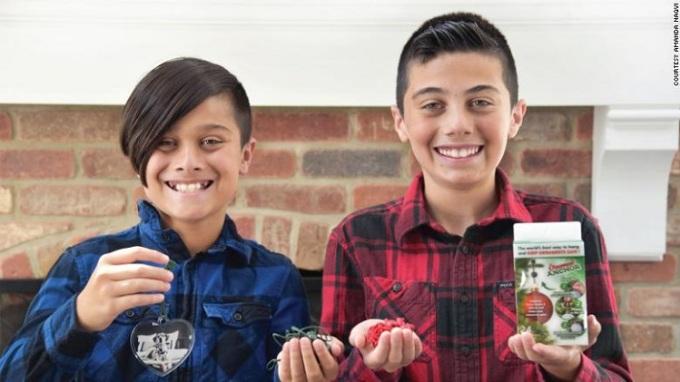 Ayaan và Mickey Naqvi đã phát minh ra neo giữ đồ trang trí không bị rớt khỏi cây thông Noel sau sự cố của mình. Ảnh: CNN.