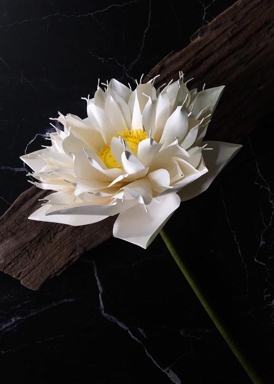 Cô gái xương thủy tinh 4 năm theo nghề làm hoa giấy