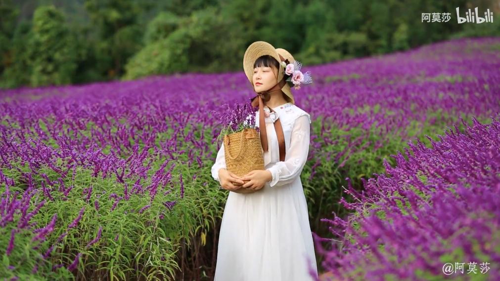 Cô gái lên núi ẩn dật trồng biển hoa