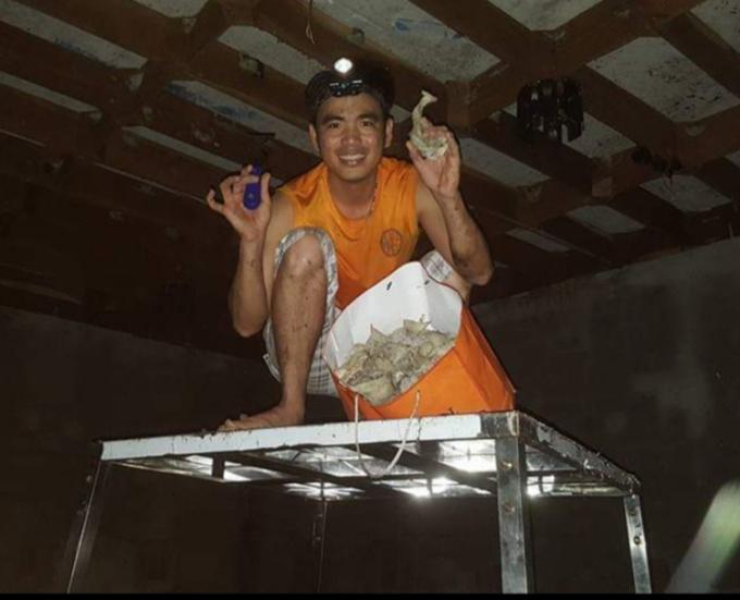 Anh Trần Tuấn Anh khai thác tại căn nhà yến đầu tiên của gia đình. Ảnh:Nhân vật cung cấp.
