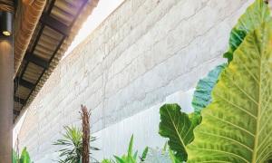 plusidea bc 15 7505 1617247131 1638 1617328133 - Ngôi Nhà ở Tây Ninh thoáng mát nhờ bỏ bớt cửa