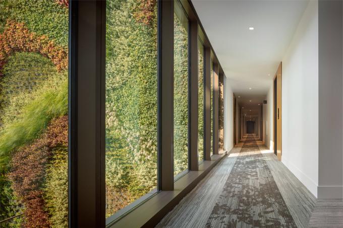 Hành lang được gắn các ô kính lớn để cư dân bên trong nhìn ra mảng xanh. Ảnh: Woods Bagot.