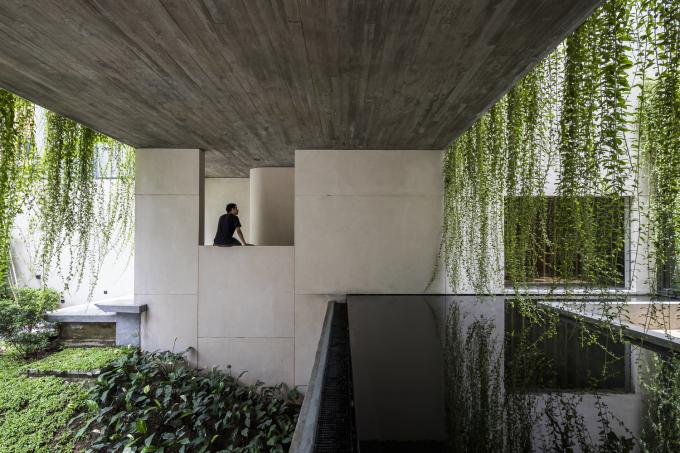 Ngôi nhà ở quận 3 được thiết kế như một công viên. Ảnh: Oki Hiroyuki.