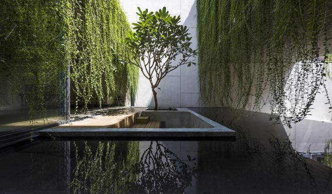 Hồ nước là chỗ thư giãn yêu thích của chủ nhà. Oki Hiroyuki.