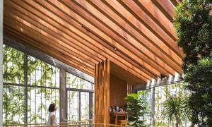 z2613845049032 b8d26735feae970 4377 7803 1627182099 - 'Khu rừng nhiệt đới' 252 m2 kết hợp cây xanh vào không gian nội thất
