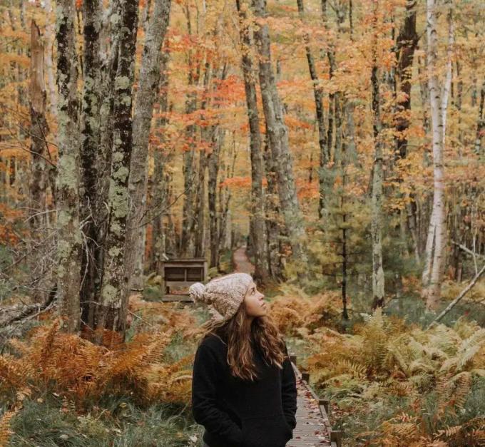 Grace thích ghi lại sự biến đổi của khu rừng bốn mùa. Ảnh: News.