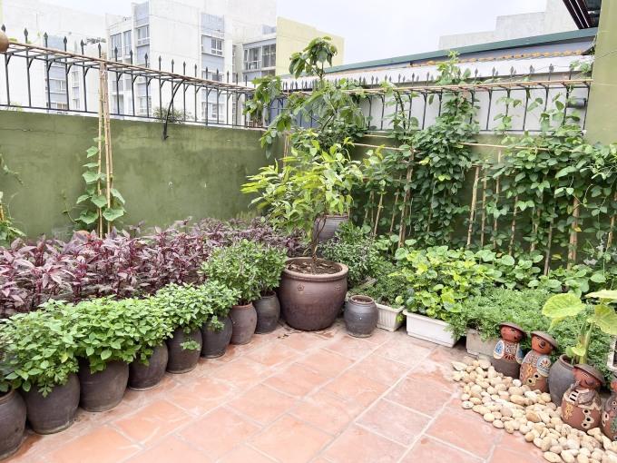 Khu vườn được trang trí như tiểu cảnh.